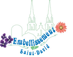 Logo Embellisement Saint-David